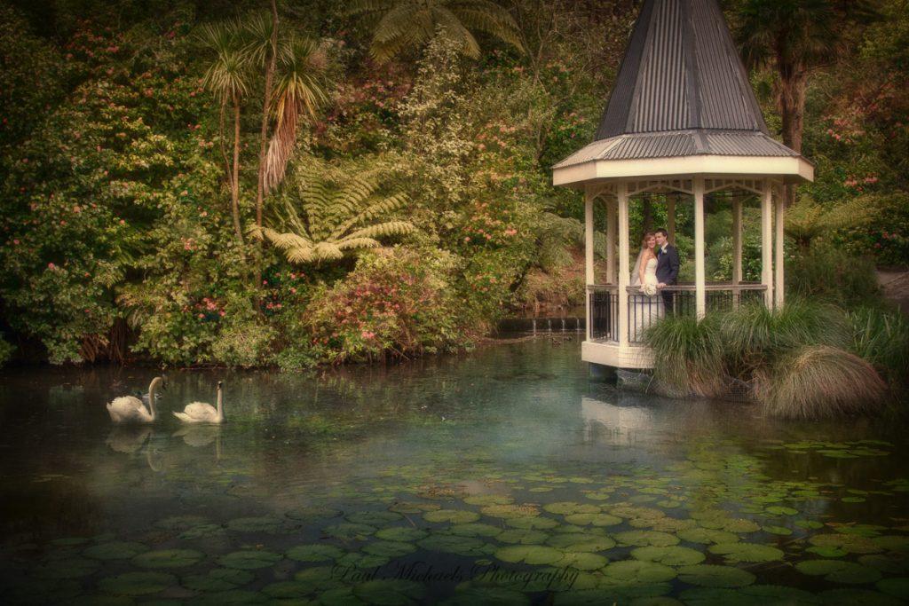 Wedding at the Wellington Botanical gardens